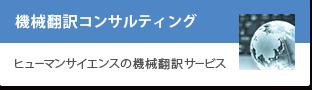 機械翻訳コンサルティング